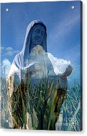 Praying For Rain Acrylic Print by Rick Rauzi