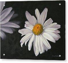 Pretty Daisy Acrylic Print by Candy Prather