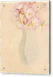 Pretty Primroses Acrylic Print