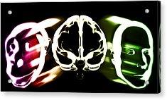 Primate Brain Evolution Acrylic Print