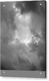 Primordial In Black And White Acrylic Print by Suzanne Gaff