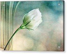 Pristine Acrylic Print