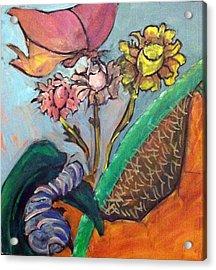 Process Of Metamorphosis Acrylic Print by Bethany Stanko