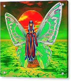 Psychedelic Butterfly Acrylic Print by Matthew Lacey