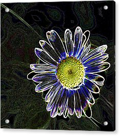 Psychedelic Daisy Acrylic Print