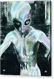 Psychotropic Alien Acrylic Print by Maynard Ellis