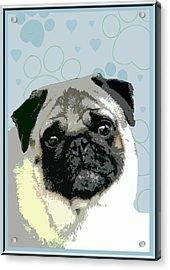 Pug Acrylic Print by One Rude Dawg Orcutt