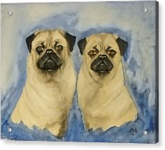 Acrylic Print featuring the painting Pugs by Edwin Alverio