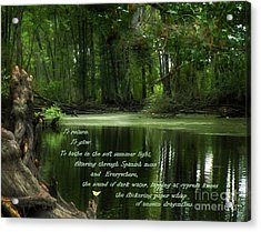 Acrylic Print featuring the photograph Pull Of Place by Deborah Smith