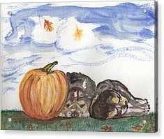 Pumpkin And Puppies Acrylic Print by Pamela Wilson