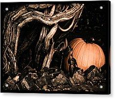 Albuquerque, New Mexico - Pumpkin Acrylic Print