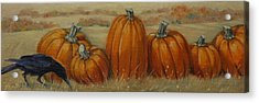 Pumpkin Row Acrylic Print by Linda Eades Blackburn