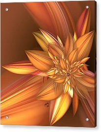 Pumpkin Spice Acrylic Print