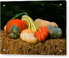 Pumpkins And Gourds Acrylic Print