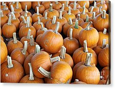 Acrylic Print featuring the photograph Pumpkins by Denise Pohl