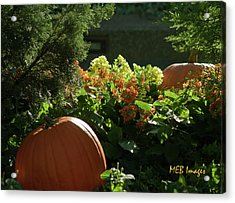 Pumpkins In Autumn Acrylic Print
