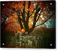 Pumpkins On The Wall Acrylic Print by Joyce Kimble Smith