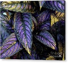 Purple Beauties Acrylic Print by Anne Raczkowski