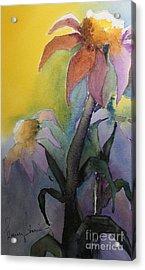 Purple Coneflowers Acrylic Print