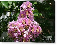 Acrylic Print featuring the photograph Purple Cross by Michael Waters