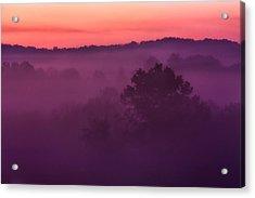 Purple Dawn Acrylic Print by Matt  Trimble