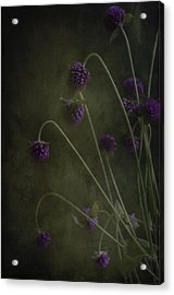 Purple Drops Acrylic Print