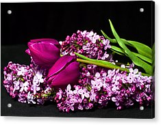 Purple Flowers Acrylic Print by Trudy Wilkerson