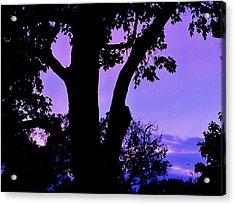 Purple Morning Acrylic Print by Todd Sherlock