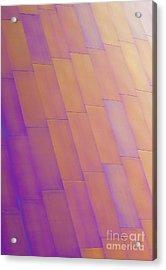 Purple Orange Two Acrylic Print by Chris Dutton