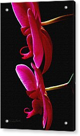 Purple Orchid Duo Acrylic Print