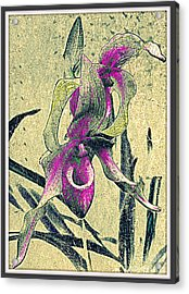 Acrylic Print featuring the mixed media Purple Orchid  by Irina Hays