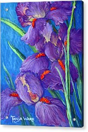 Purple Passion Acrylic Print by Tanja Ware