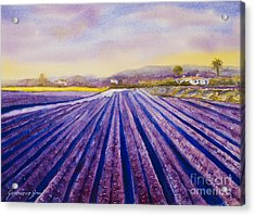 Purple Spain Acrylic Print by Genevieve Brown