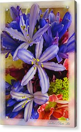 Acrylic Print featuring the photograph Purple Stars by Debbie Portwood