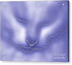Digital Puss In Blue Acrylic Print by Linsey Williams