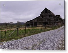 Put Out To Pasture  Acrylic Print