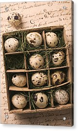 Quail Eggs In Box Acrylic Print by Garry Gay