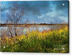 Quarry Lakes In Fremont California . 7d12643 Acrylic Print by Wingsdomain Art and Photography