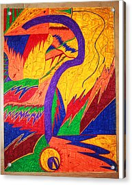 Questionable Direction Acrylic Print by Todd Breitling