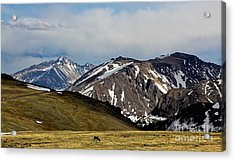 Acrylic Print featuring the photograph Quiet Acres by Everett Houser