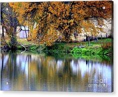 Quiet Autumn Day Acrylic Print by Carol Groenen