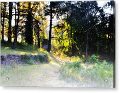 Quiet Morning In The Woods Acrylic Print by Bill Cannon
