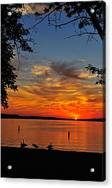 Quiet Morning Acrylic Print by Rusty Enderle