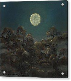 Quiet Night Acrylic Print by Anna Folkartanna Maciejewska-Dyba
