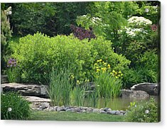 Quiet Pond Acrylic Print by Michael Carrothers