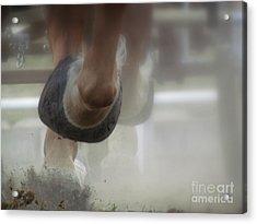Racing Acrylic Print by France Laliberte