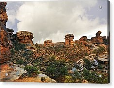 Rain At The Needles District Acrylic Print by Marty Koch