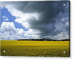 Rain Clouds Acrylic Print by Adrian Bicker