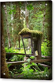 Rain Forest Telephone Booth Acrylic Print by Tanya  Searcy