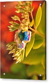 Rainbow Crystal  Acrylic Print
